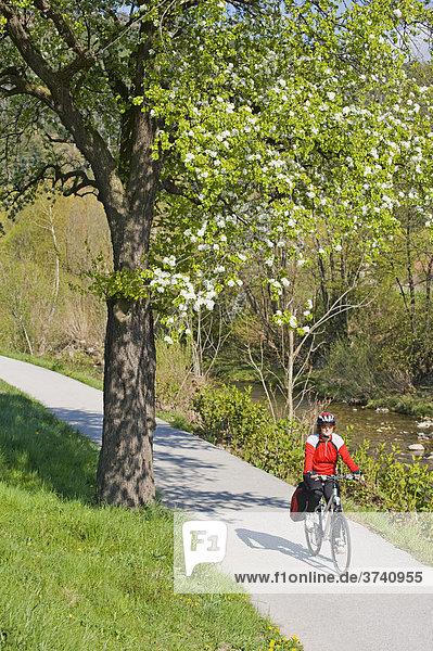 Radfahrerin entlang des Triestingtalradweges zwischen Weißenbach und Fahrafeld  Triestingtal  Niederösterreich  Österreich  Europa