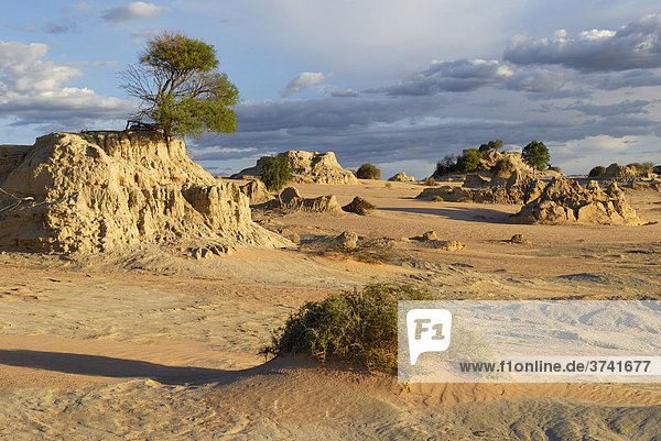 Versteinerte Sanddünen  Mungo National Park  New South Wales  Australien