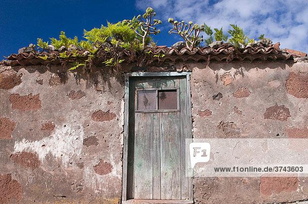 Verlassenes Haus in La Tosca  La Palma  Kanarische Inseln  Spanien  Europa