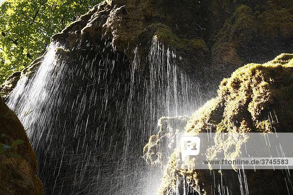 Schleierfaelle  Bridal Veil waterfalls on the Ammer River  Pfaffenwinkel  Upper Bavaria  Bavaria  Germany  Europe