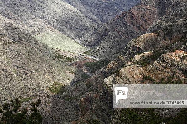 Barranco de Majona  Schlucht  La Gomera  Kanaren  Kanarische Inseln  Spanien  Europa