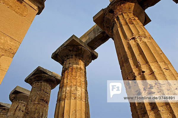 Channelled temple columns  Selinunte  Sicily  Southern Italy  Europe