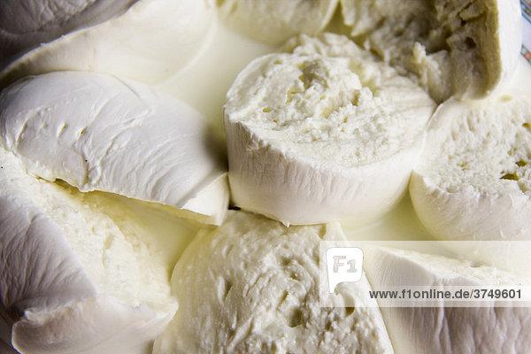 Büffel-Mozzarella  hergestellt von Campana Doc  berühmt in Neapel  Kampanien  Italien  Europa