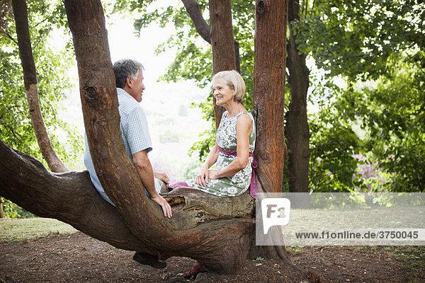 Erwachsenes Paar im Baum sitzend  entspannend