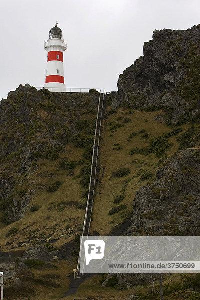 Cape Palliser Leuchtturm bei Wellington  Nordinsel  Neuseeland