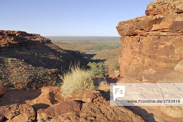 Blick vom Kings Canyon Rim auf die Ebene des Watarrka Nationalpark  Northern Territory  Australien