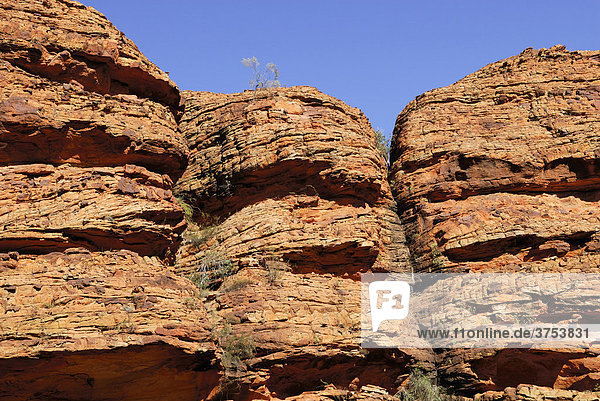 Gesteinsformation im Kings Canyon  Watarrka-Nationalpark  Northern Territory  Australien
