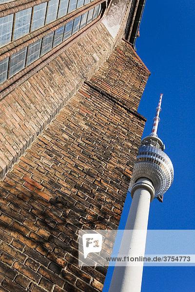Detailaufnahmen der St. Marienkirche und Fernsehturm am Alexanderplatz  Berlin Mitte  Deutschland