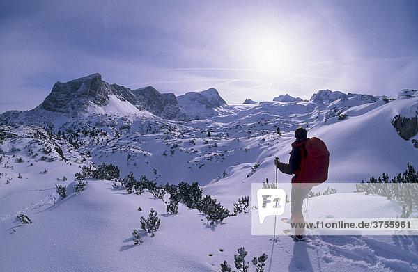Schneeschuhgeherin vor dem Massiv des Hohen Dachstein  2995m  Steiermark  Österreich  Europa