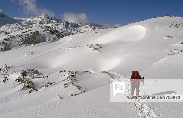 Schneeschuhgeherin im Aufstieg zum Speikberg  Dachstein-Region  Steiermark  Österreich  Europa