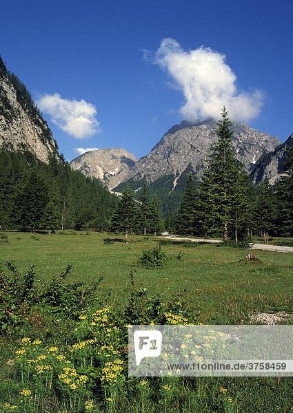 Stallental  Hahnkampl und Rauher Knöll  Karwendel-Gebirge  Tirol  Österreich  Europa