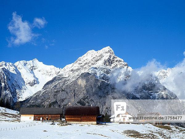 Walder-Alm alpine pasture  Karwendel Range  Tyrol  Austria  Europe