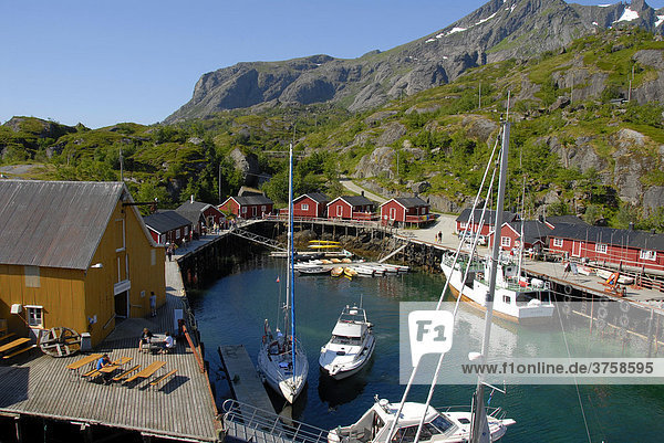 Boats in the harbour and red wooden rorbu houses in Nusfjord  Lofoten Archipelago  Norway  Scandinavia