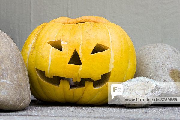 Carved pumpkin for Halloween  jack-o-lantern