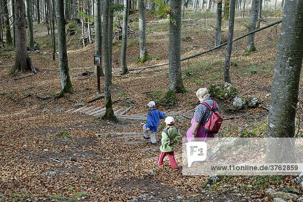 Familie beim wandern durch den herbstlichen Wald