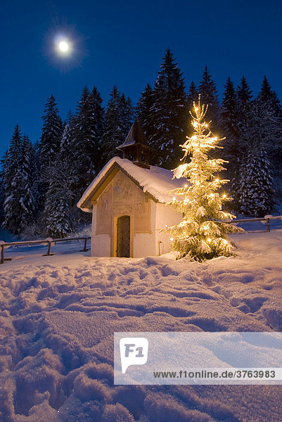 Kapelle mit beleuchtetem Christbaum in Oberbayern  Bayern  Deutschland