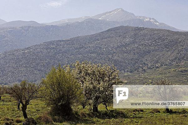 Lasithi Plateau and Mt. Dikte  Crete  Greece  Europe
