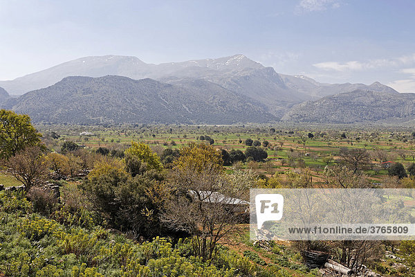 Lasithi Plateau and Mt. Dikte  Crete  Greece  Europe