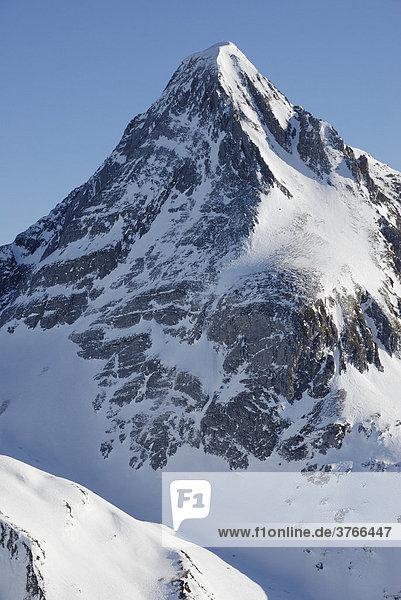 Schneebedeckte Gipfelpyramide des Brandenberger Kolm in den Zillertaler alpen Tirol Österreich