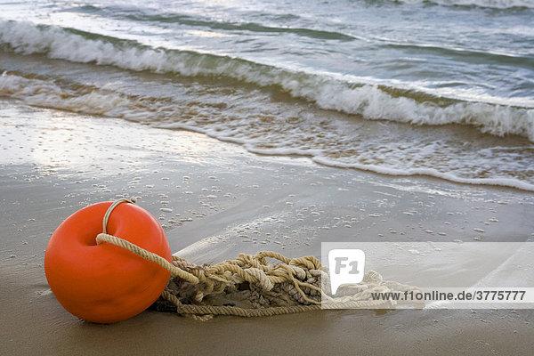 Angeschwemmte Boje mit Seilen am Strand