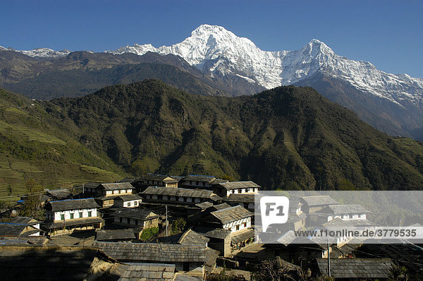 Dorf vor dem gewaltigen Bergmassiv des Annapurna South Ghandruk Annapurna Region Nepal