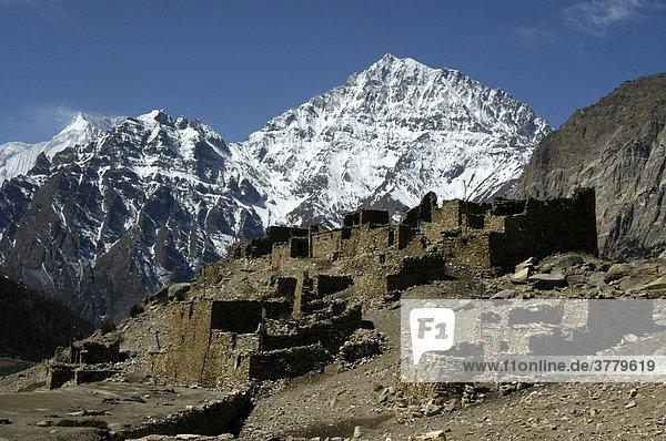 Übereinander geschachtelte Steinhäuser vor schneebedeckter Bergspitze des Pisang Peak Chyakhu Nar-Phu Annapurna Region Nepal
