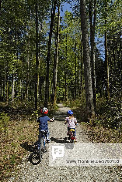 Grünwald bei München Oberbayern Deutschland Sauschütt mit Waldlehrpfad Kinder mit dem Fahrrad