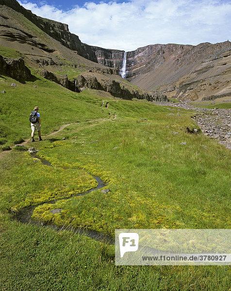 Wanderer durch grüne Wiese auf dem Weg zum Hengifoss  Island