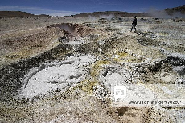 Geysire  Hochland von Uyuni  Bolivien