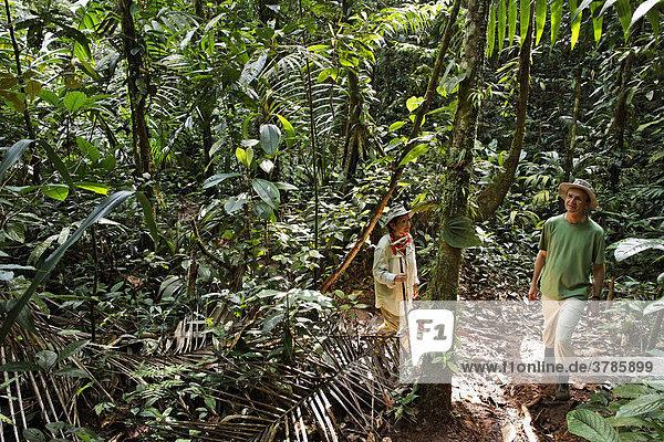 Touristen wandern im Regenwald  Nationalpark Maquenque  Costa Rica