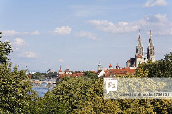 Dom und Donaubrücken  Blick vom Herzogspark  Regensburg  Oberpfalz  Bayern
