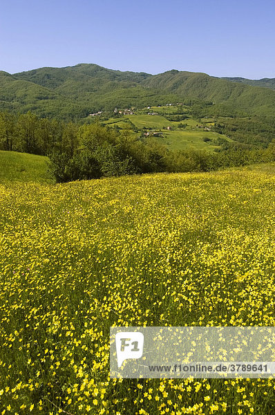 View from the pass street Cento Croce in the Ligurian sea alps north of Varese Ligure Provincia Parma Emilia Romagna Italy