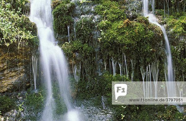 Oberösterreich Salzkammergut kleiner Wasserfall mit Moos am Gosausee