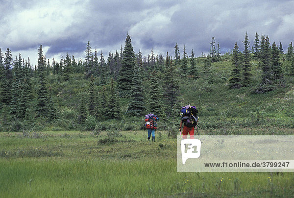 Bergwandern im Denali Massiv Mt.Silverthrone Höhe 4000m- Bergmassiv in der Nähe des Mt.Kinly - Alaska