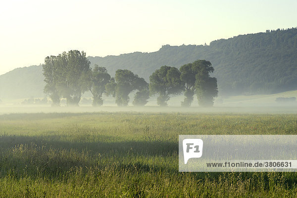 Altmuehl valley near Beilngries Upper Bavaria Germany with morning haze