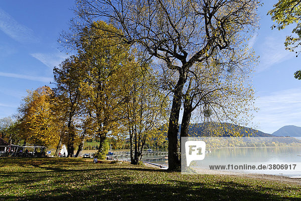 Tegernsee Oberbayern Bayern Deutschland bei Gmund