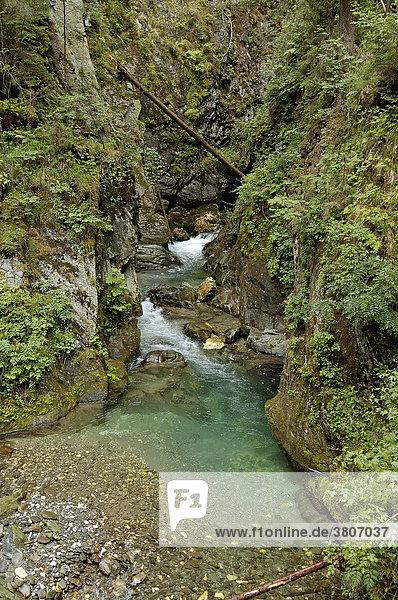 Ratsching Gilfenklamm Gilfen canyon in the Ratschingstal Val di Racines near Sterzing Vipiteno Southern Tyrol Alto Adige Italy