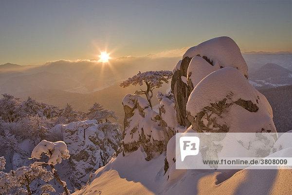 Winterstimmung bei Sonnenuntergang auf dem Peilstein  Niederösterreich  Österreich