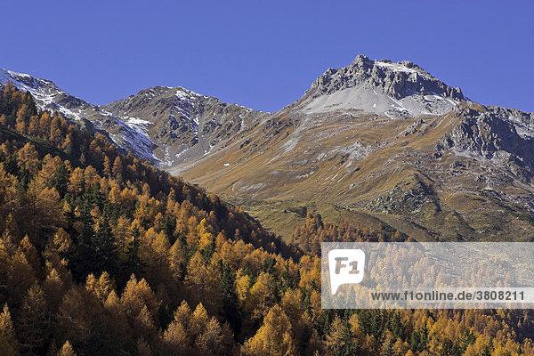 Wanderung zur Schlininger Alm  Schliniger Tal  Oberer Vinschgau  Südtirol  Italien