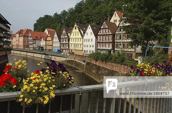 Brückengeländer m. Blumenschmuck  Häuserzeile a.d. Nagold  Calw  Schwarzwald  Baden-Württemberg  BRD  Deutschland
