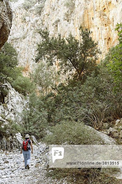 Kritsa-Schlucht  Kreta  Griechenland