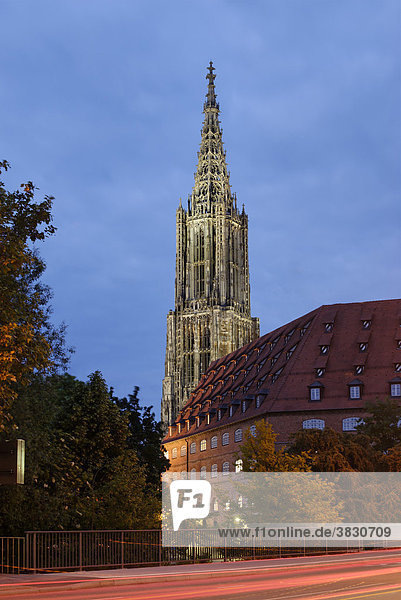 Ulm Baden-Wuerttemberg Germany cathedral