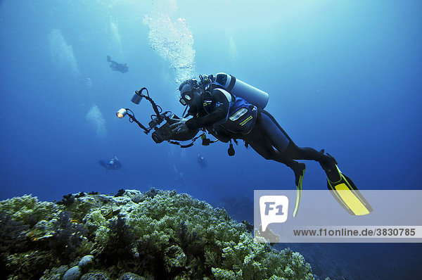 Ägypten  Rotes Meer  Taucher mit Videokamera