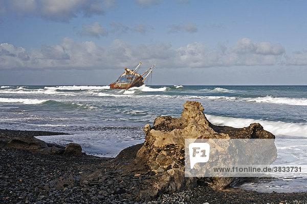 Schiffswrack American Star an Playa de Garcey nahe Pajara   Fuerteventura   Kanarische Inseln