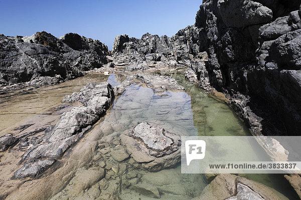 Gezeitentümpel in Felsküste in Aguas Verdes - Playa del Valle   Fuerteventura   Kanarische Inseln
