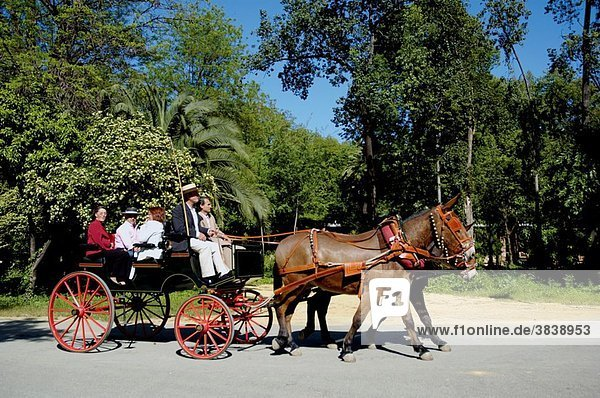 Spain andalusia seville maria luisa park sevillans and barouche carriage during the feria de abril