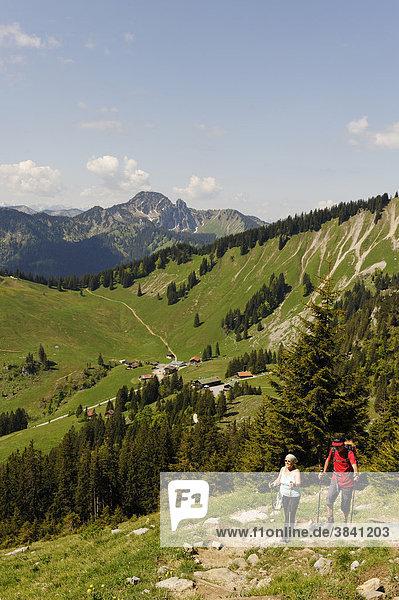 Am Weg zur Brecherspitze  Obere Firstalm  Untere Firstalm  Firstalmen unter der Bodenschneid  Spitzing  Mangfallgebirge  Oberbayern  Bayern  Deutschland  Europa