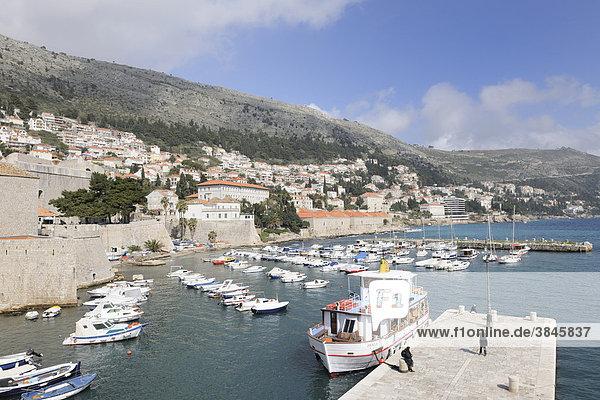 Blick von der Stadtmauer auf den alten Hafen  Dubrovnik  Ragusa  Kroatien  Europa