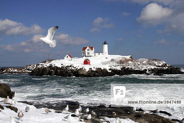 Nubble Light Leuchtturm  York  Maine  New England  USA