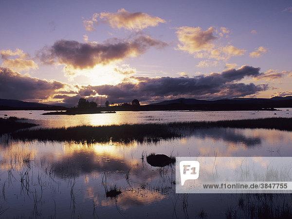 Loch Ba bei Sonnenaufgang  Rannoch Moor  Highlands  Schottland  Großbritannien  Europa